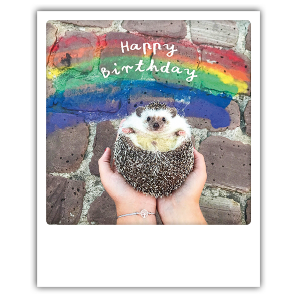 Pickmotion - Happy birthday hedgehog